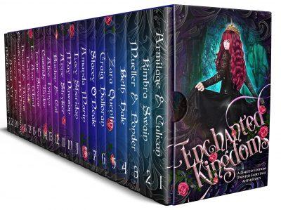 Enchanted Kingdoms book cover